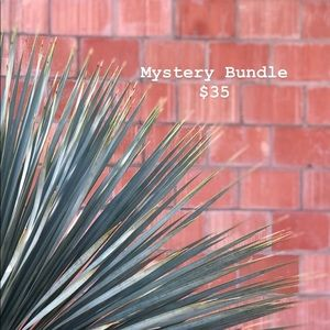 Mystery Bundle $35 // Sale $25 Limited Time Only